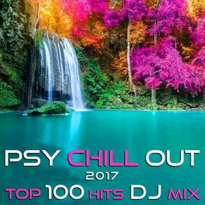 Psy Chill Out 2017 Top 100 Hits DJ Mix