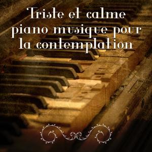 Triste et calme piano musique pour la contemplation - Les plus belles mélodies au piano d'ambiance contemplative & Nostalgique