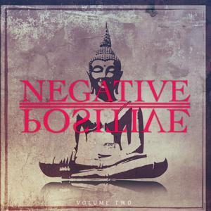 Negative Positive, Vol. 2