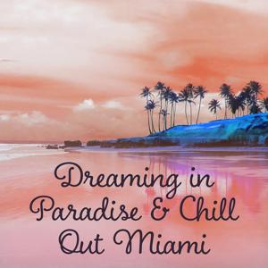 Dreaming in Paradise & Chill Out Miami