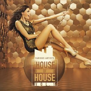 The House of House, Vol. 1