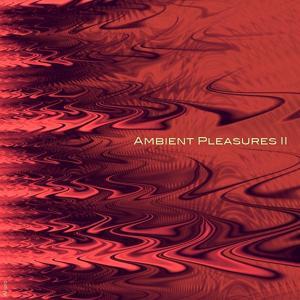 Ambient Pleasures 2