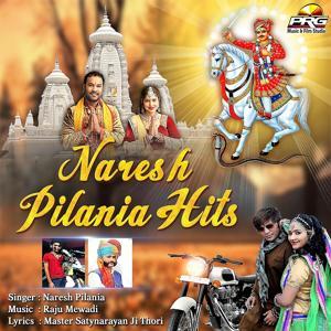 Naresh Pilania Hits