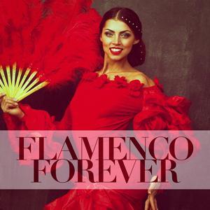 Flamenco Forever