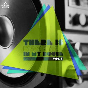 There Is - Electro In My House., Vol. 7
