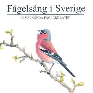 Fågelsång i Sverige