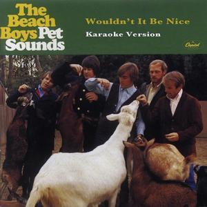 Wouldn't It Be Nice (Karaoke Version)