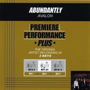 Abundantly (Performance Tracks) - EP