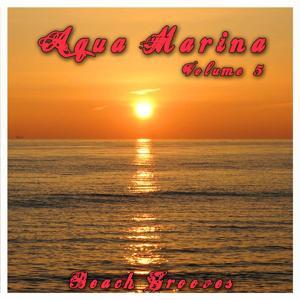 Aqua Marina 5 - The Beach Grooves