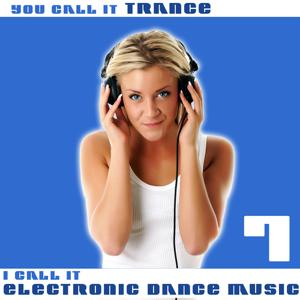 You Call It Trance, I Call It Electronic Dance Music 7