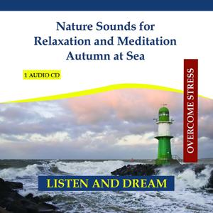Nature Sounds for Relaxation and Meditation - Autumn at Sea - Wind at Sea