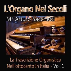 L'organo nei secoli: La trascrizione organistica nell'ottocento in Italia, vol. 1