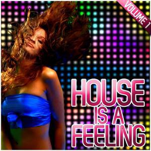 House Is a Feeling, Vol. 1