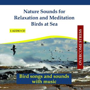 Nature Sounds for Relaxation and Meditation - Birds at Sea