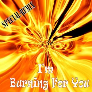 I'm Burning For You (Special Remix)