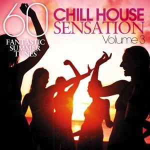 Chill House Sensation, Vol. 03 (60 Fantastic Summer Tunes)