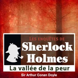 Sherlock Holmes: La vallée de la peur