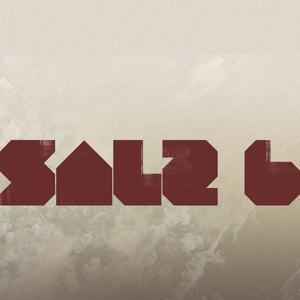 SALZ 6